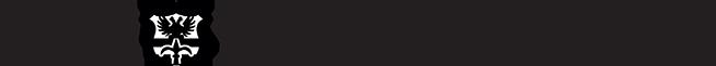 times-logo-medium