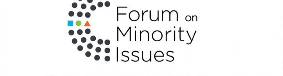 Intervento di TRIEST NGO al XII Forum on Minority Issues, OHCHR – ONU