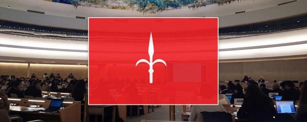 2014: per la prima volta, dopo decenni all'ONU si è parlato di Territorio Libero di Trieste! [video]