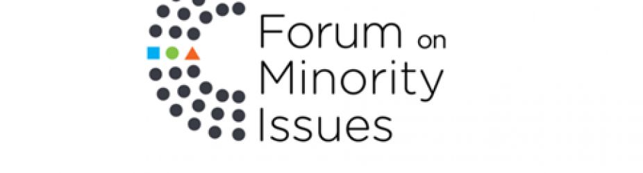 Intervento di TRIEST NGO al XIII Minorities Forum 2020 dell'OHCHR–ONU